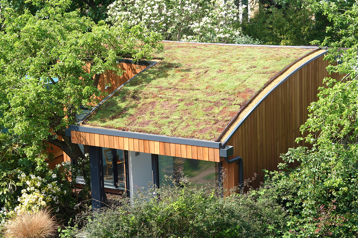 Garden studio with sedum roof
