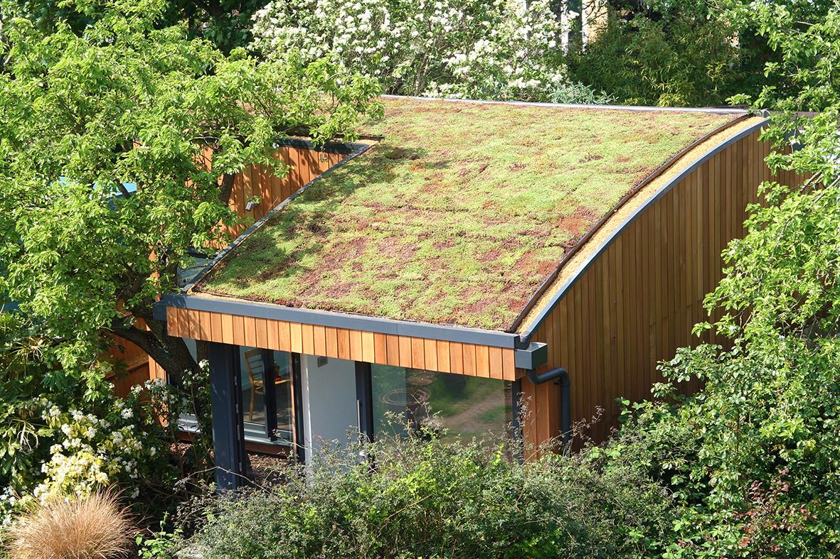 Garden studio with sedum roof