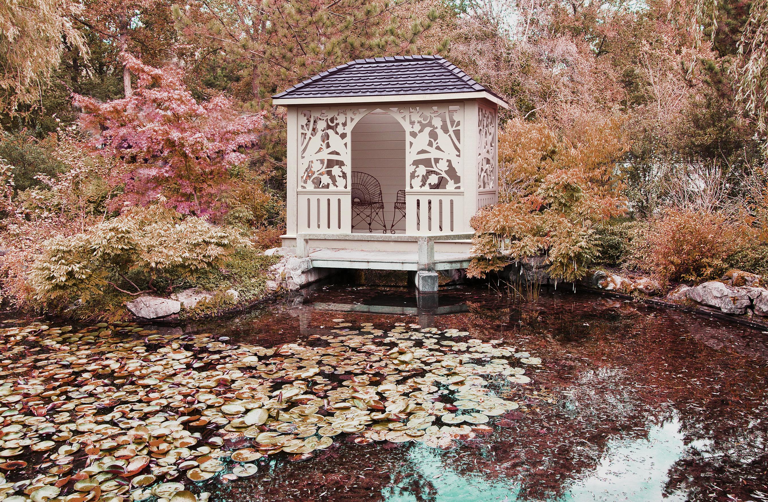 Birdsong pavilion