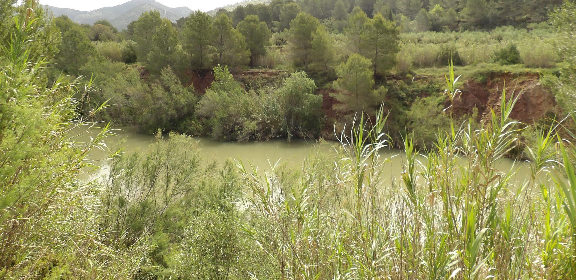 oasis country park carp fishing lake valencia