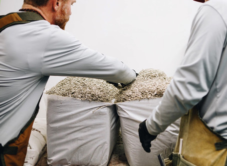 📢 Hempitecture Hempcrete Contractor Training Announcement 📢