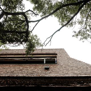 lisawoodsphoto-hemp-house-90-(ZF-0033-64