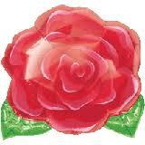 Globo Rosa
