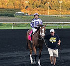 Amy Farah Fowler, Stakes winner, Astrology, Run Cat Run, Blackstone Farm LLC, Chrstian Black