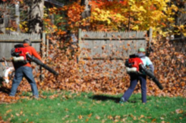 outdoor manual worker clean the fallen l