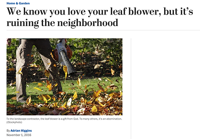 News_WaPo_LoveYourLB.png