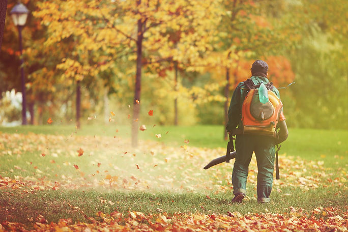 Worker in autumn with a leaf blower.jpg