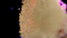 dirt-texture.png