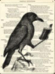 raven_edited.jpg