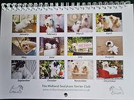 2022 Calendar Back.jpg