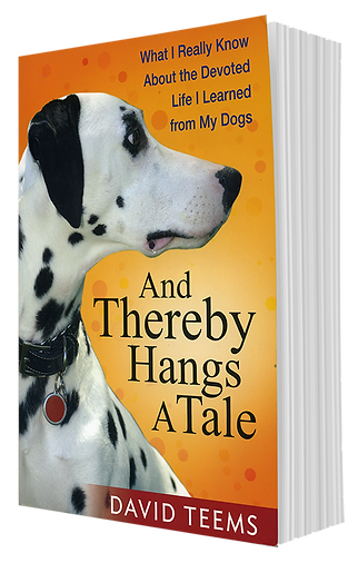 dogbook.png