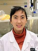 Dr. Ying Du