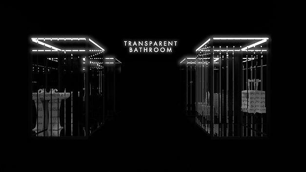 TRANSPARENT-2.jpg