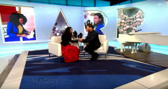 The Harry Show