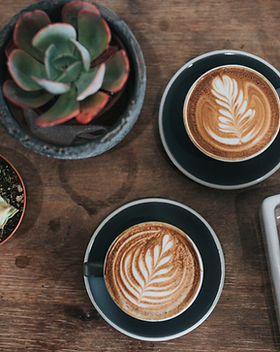 Plants and Coffees