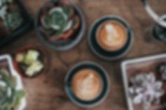 Piante e caffè