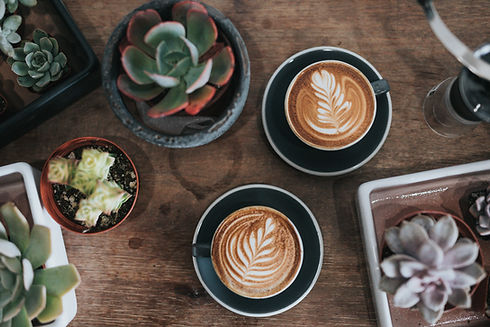 Plantas y cafés