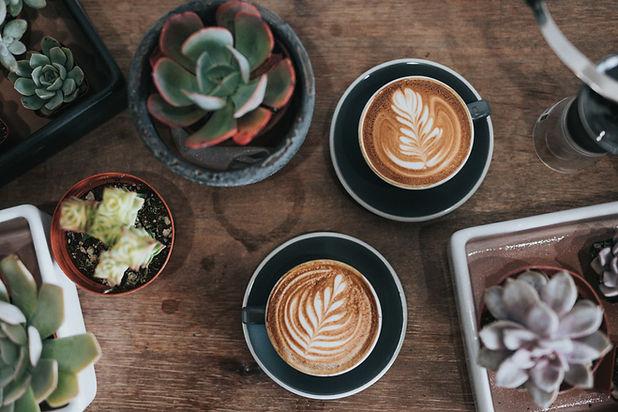 Pflanzen und Cappuccinos