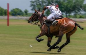 02-Polo-Rider-Tito's-White-03-Del-Walton