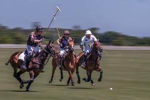 015-Polo-Riders-Black-2-4-Neil-Osburg-Jo