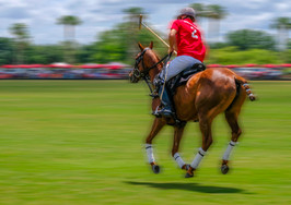 001-Polo-Rider-Wrigly-Red-01-Herndon-Rad