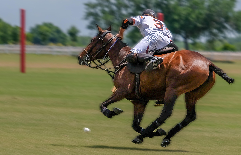 018-Polo-Rider-Tito's-White-03-Del-Walto