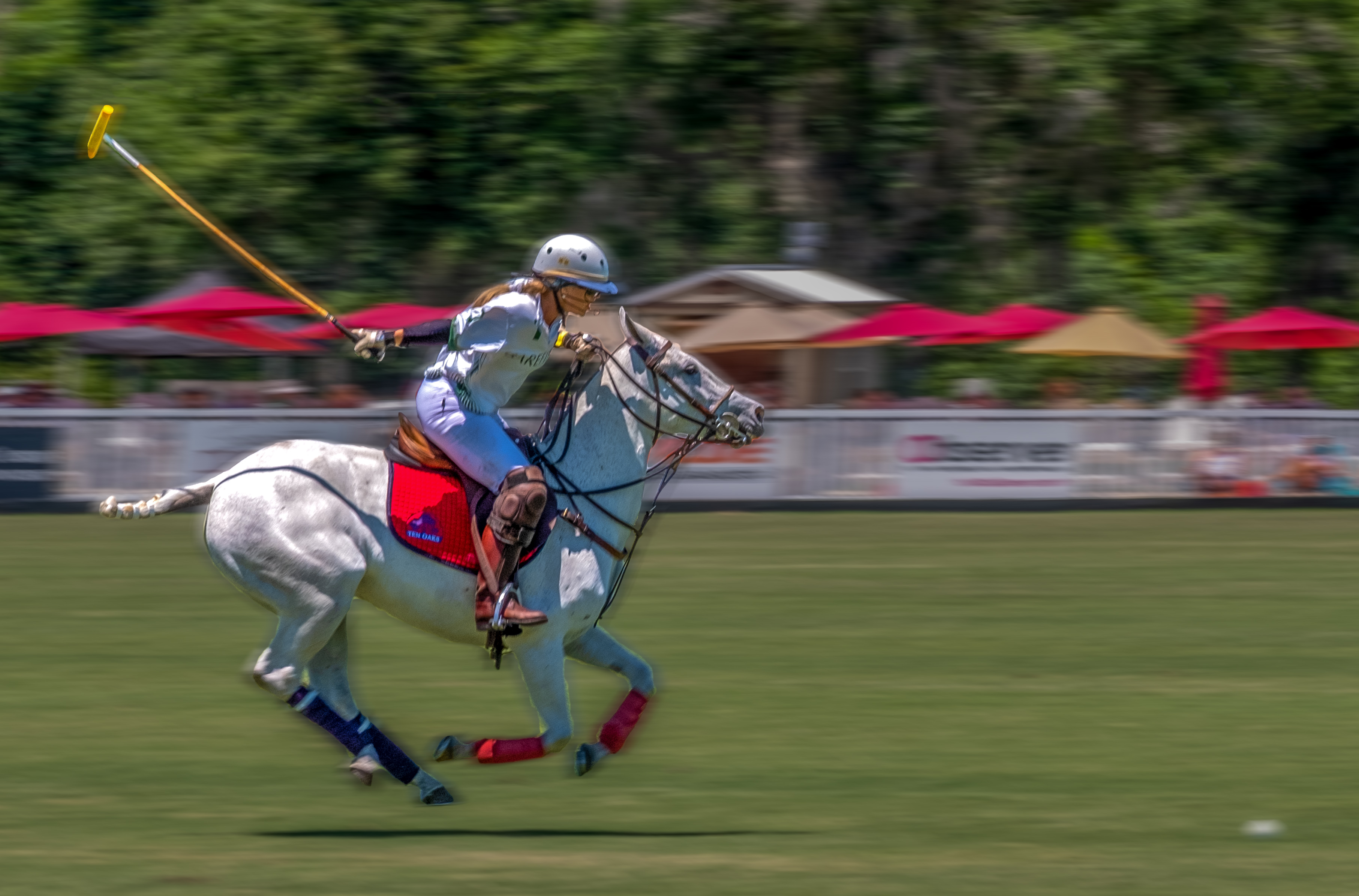002-Polo-Rider-Barefield-01-Kelly-Beck