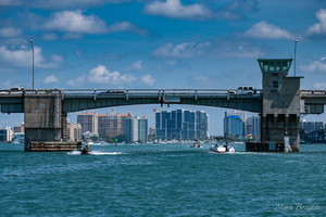 Sarasota-Views--40.jpg