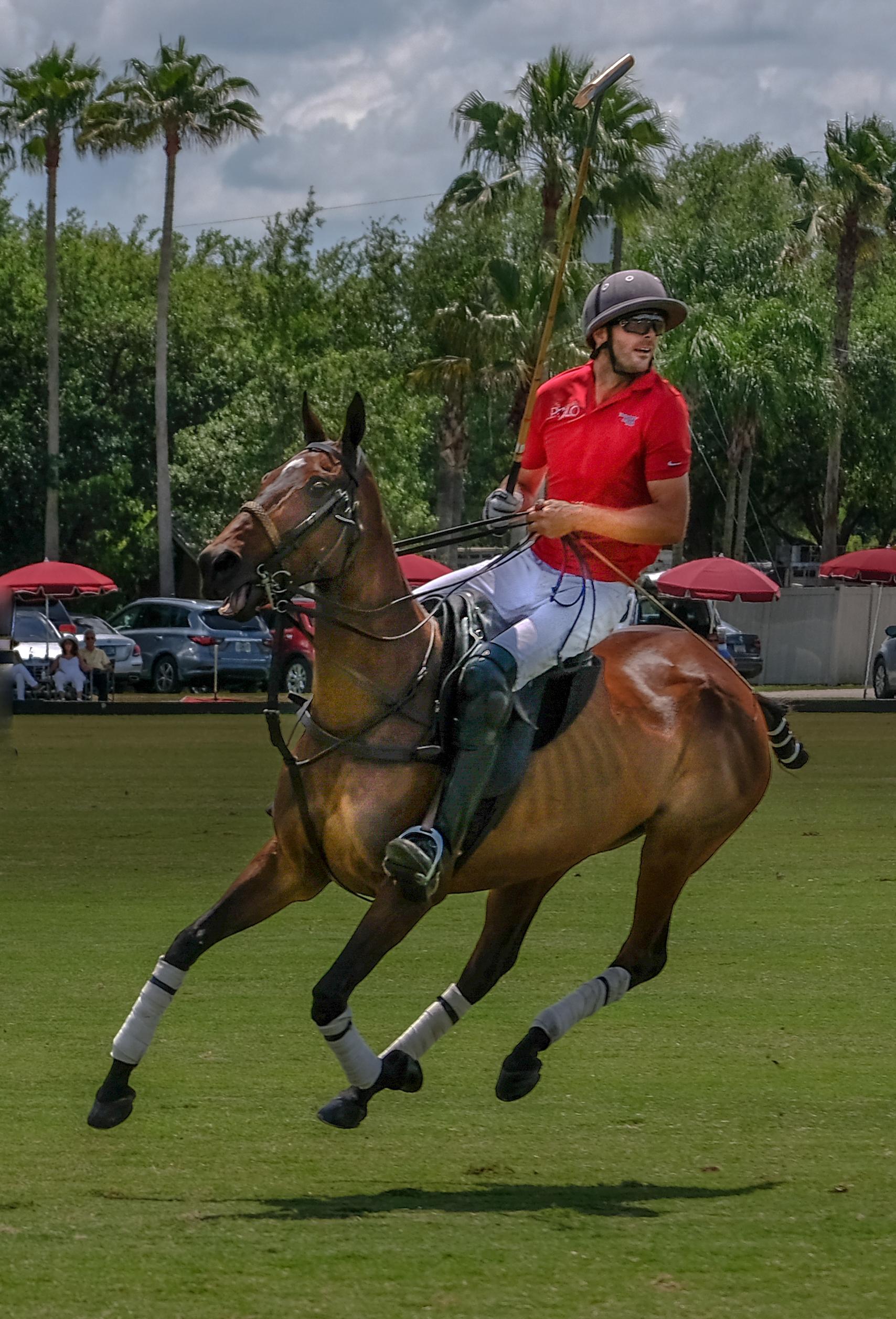 013-Polo-Rider-Wrigley