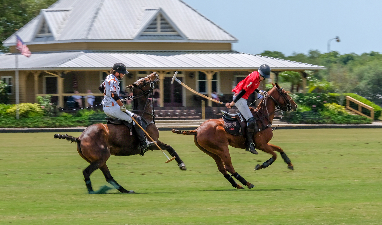 009-Polo-Riders-Tito's-White-3-Dale-Walt