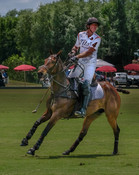 007-Polo-rider-Tito's-white-04-Joe-Wayne