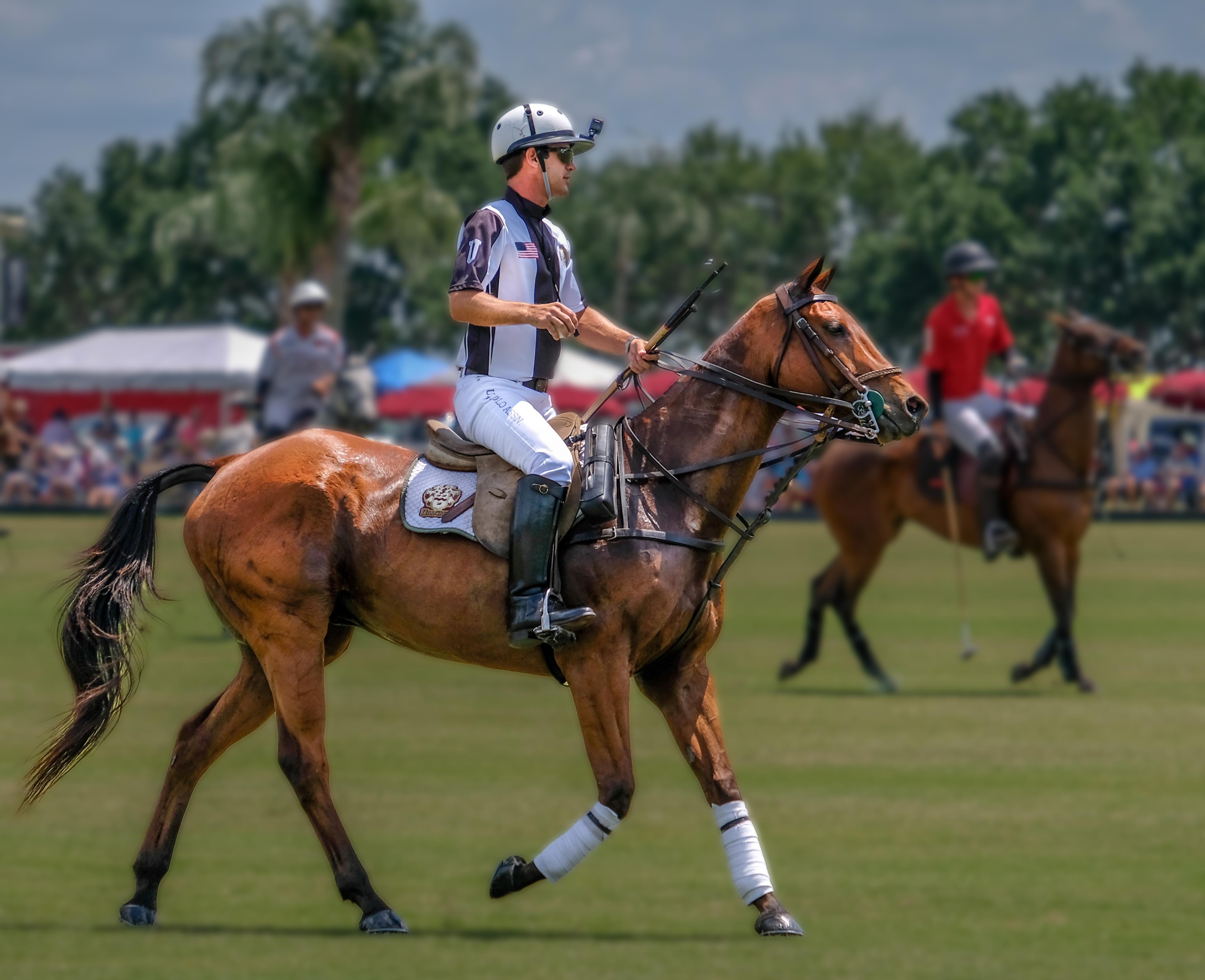 003-Umpire-Jamie-Mirikitani-02