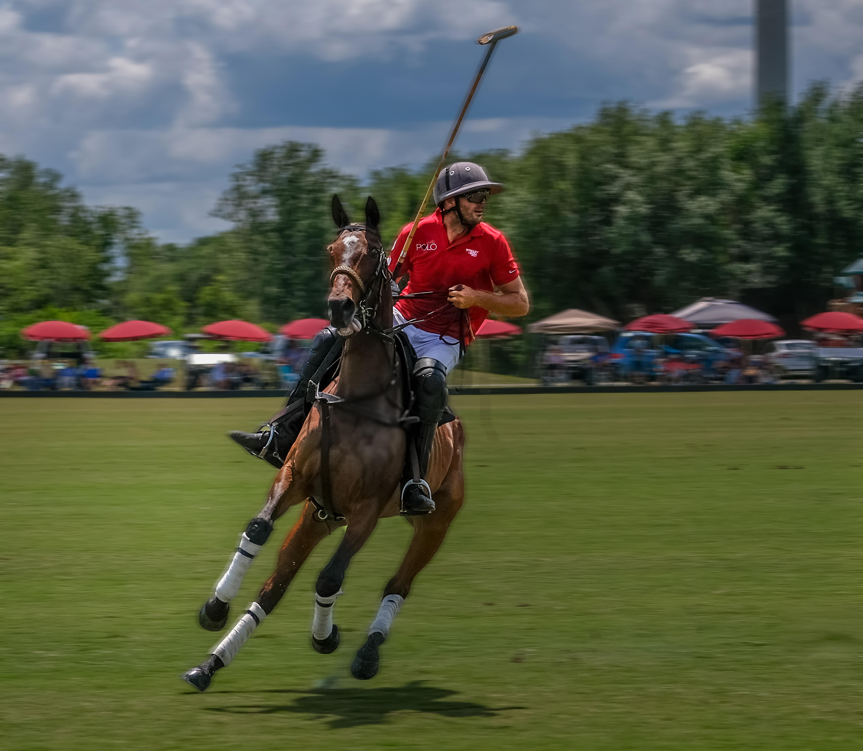 004-Polo-Rider-Wrigley-