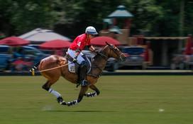 006-Polo-Rider-Wrigley-04-James Miller.j