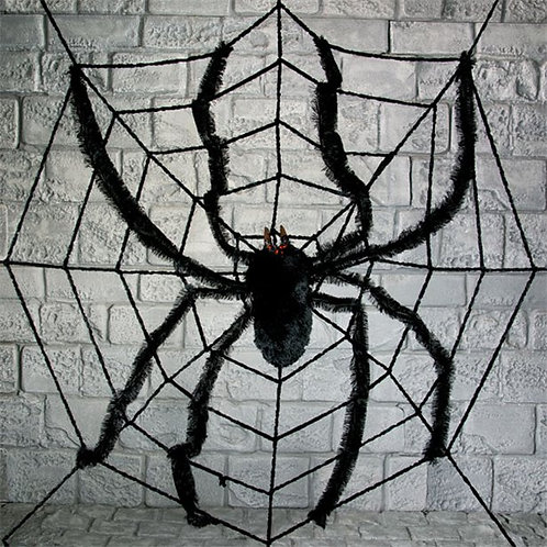 Large Spider Web & Spider