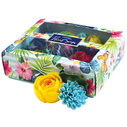 Boxed Scented Rainbow Soaps