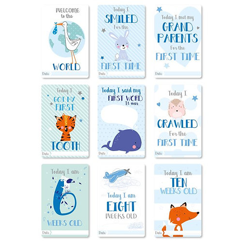 Baby Boy Milestone Cards
