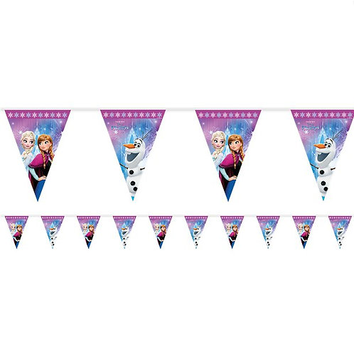 Frozen Flag Party Bunting