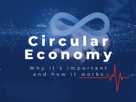 The Circular Economy: Why It's Important And How It Works