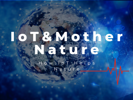 Co-Creating a Sustainable Future: How IoT can aid Mother Nature