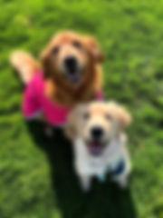 Riley and Finn at Cape .jpg