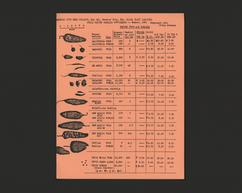 Chili Pepper Catalog Supplement (Verso)
