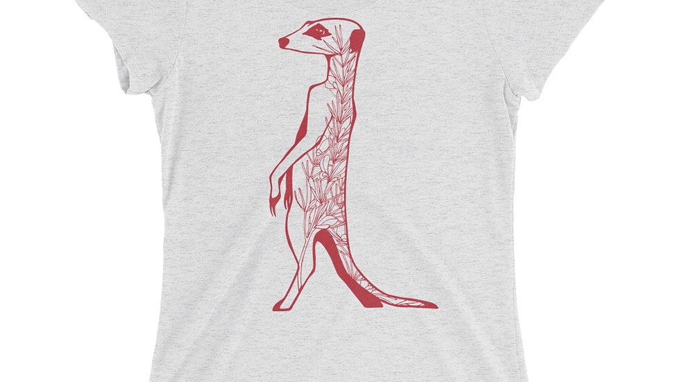Meerkat with rooibos red