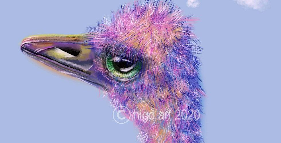 """""""Ostrich in Love"""""""