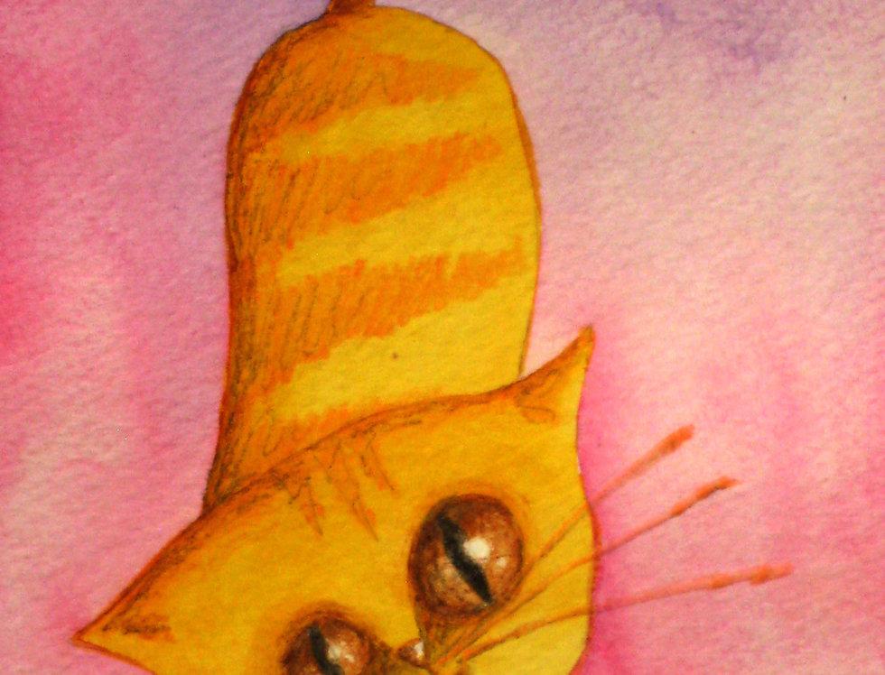 """""""Orange Cat"""""""