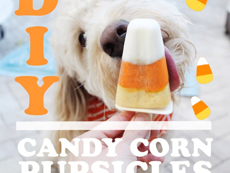 Candy Corn Pupsicles