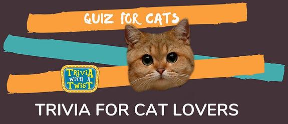 quiz for catsinsta.jpg