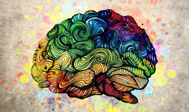 腦神經科學發現:「感恩」可以改變大腦迴路,讓你更快樂