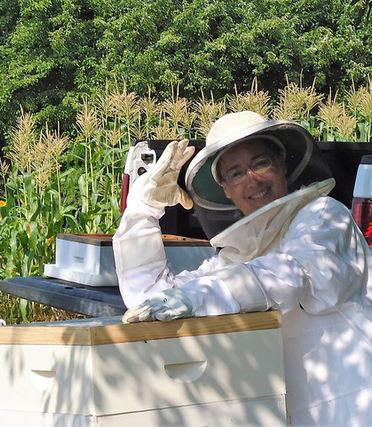 beekeeping, honeybees