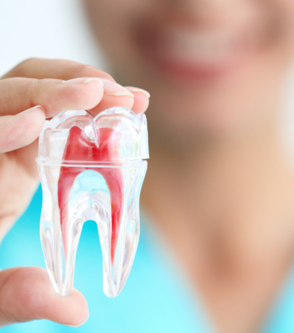 root canal dentist in Warren, NJ